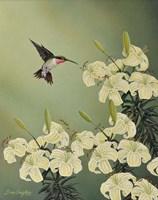 Spring Lilies Fine Art Print