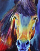 Horse Without Title Fine Art Print
