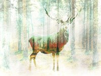 Lord of the Woods Fine Art Print