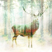 Lord of the Woods (detail) Fine Art Print