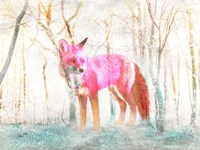 The Wilderness Fine Art Print