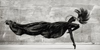 Black Swan Fine Art Print