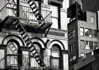 TriBeCa Beauty, NYC Fine Art Print