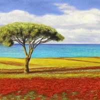 Mediterraneo I Fine Art Print