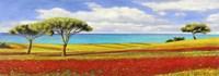 Mediterraneo Fine Art Print