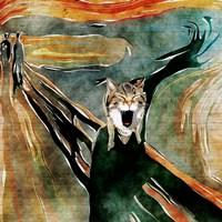 The Meow, Kansas City Fine Art Print