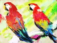 Ara Ara Fine Art Print