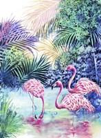 Three Flamingos Fine Art Print