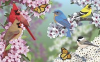 Birds In Spring Blossom Fine Art Print