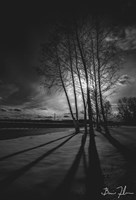 Into Darkness Fine Art Print