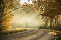 Autumn Drive Fine Art Print