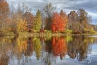 Colors On The Lake Fine Art Print
