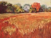 Fall Fine Art Print