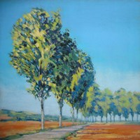 Normandy Poplars II Fine Art Print
