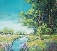 Summer Stream Fine Art Print