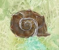 Ocean Music Box Fine Art Print