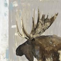 Moose Tails I Fine Art Print
