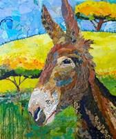 Wild Jackass Fine Art Print
