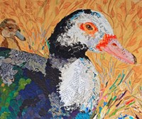 And the Duck Said Quack Fine Art Print