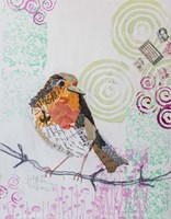Robin on White 2 Fine Art Print