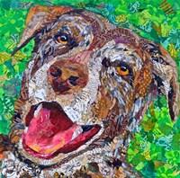 Ben Dog Fine Art Print