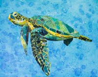 Floating Sea Turtle Fine Art Print