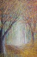 Autumn Trees In Evening Light Fine Art Print