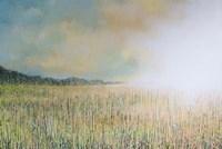 A Soft Summer Sunset Fine Art Print