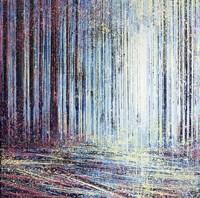 Morning Light In The Forest Fine Art Print