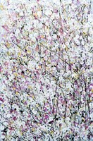 Abstracted Spring Blossom Fine Art Print