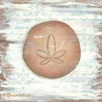 Ocean Sand Dollar Fine Art Print