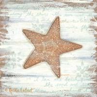 Ocean Starfish Fine Art Print
