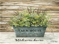 Welcome Home Fine Art Print