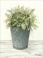 Old Bucket of Greenery Fine Art Print