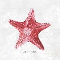 Red Starfish Fine Art Print