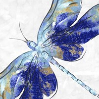 Blue Dragonfly Fine Art Print
