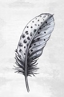 Indigo Feather II Fine Art Print