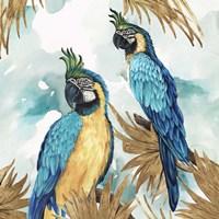 Golden Parrots Fine Art Print