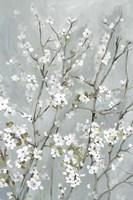 Light Almond Blossoms Fine Art Print