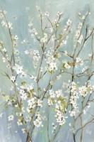 Teal Almond Blossoms Fine Art Print