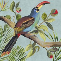 Paradise Toucan I Fine Art Print