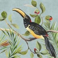 Paradise Toucan II Fine Art Print