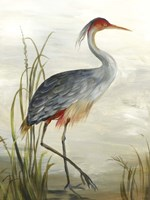 Grey Heron Fine Art Print