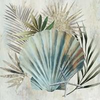 Turquoise Shell I Fine Art Print