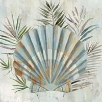 Turquoise Shell II Fine Art Print