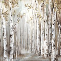 Sunset Birch Forest III Fine Art Print