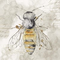 Queen Bee II Fine Art Print