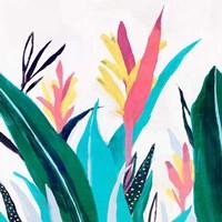 Alpinia I Fine Art Print