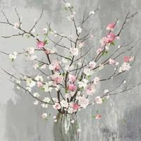 Delicate Pink Blooms Fine Art Print