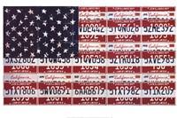 USA License Flag Fine Art Print